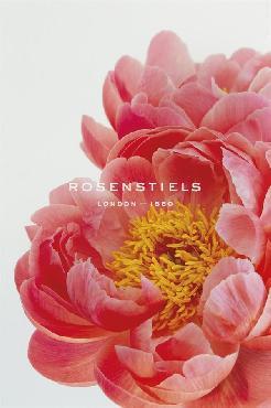 Irene Suchocki Blooming Beauty Giclee
