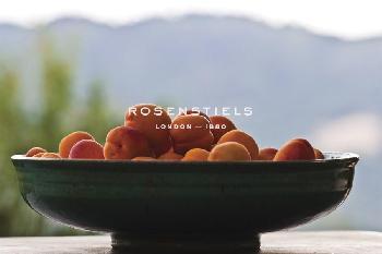 Gaetan Caron Bowl Of Apricots Giclee