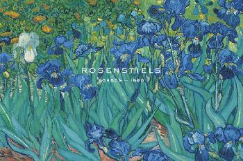 Vincent Van Gogh Irises, 1889  -  Detail Giclee Canvas
