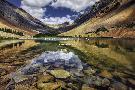 Michael Greene Mountain Blends