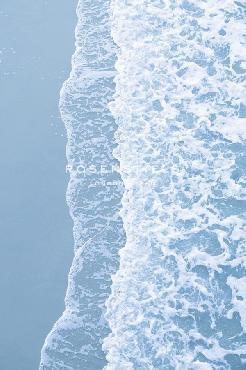 Irene Suchocki Shoreline Drift Giclee