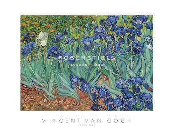 Vincent Van Gogh Irises, 1889