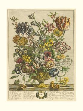 Robert Furber Twelve Months of Flowers 1730/April