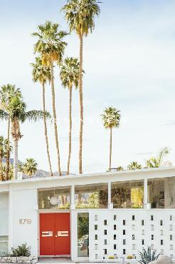 Irene Suchocki Palm Heights  -  Home