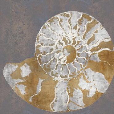 Mark Chandon Nautilus II