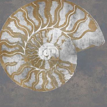 Mark Chandon Nautilus I Giclee Canvas
