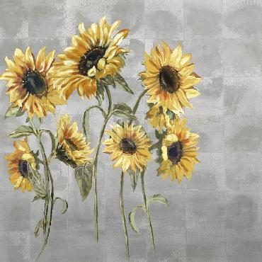 Mark Chandon Sunflower Burst Giclee Canvas