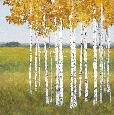 Chandon Tree VIsta  -  Escape Giclee
