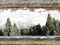 Mark Chandon Alpine Range  -  Teton