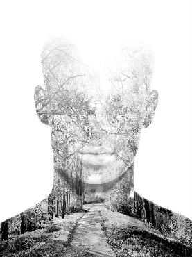 Justin Park Poetic Path Giclee