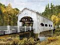 Mark Chandon Backwoods Bridge