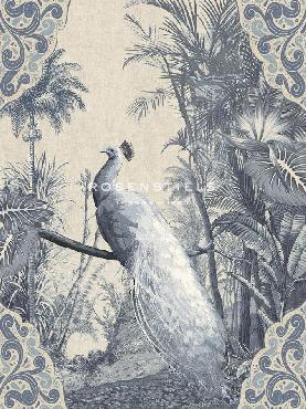 Mark Chandon Tropical Fantasy  -  Peacock Giclee Canvas