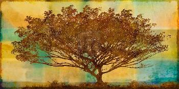 Mark Chandon Autumn Radiance Giclee Canvas