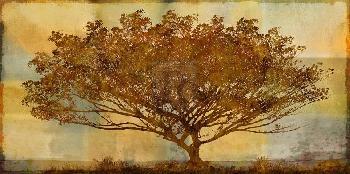 Mark Chandon Autumn Radiance Sepia Giclee Canvas