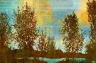 Mark Chandon Spring Tree II