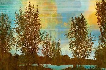 Mark Chandon Spring Tree II Giclee Canvas