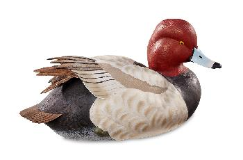 Sam Nottleman Swan Lake Redhead Lifesize Decoy Sculpture