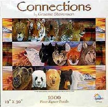 Graeme Stevenson Connections 1000 Piece Puzzle