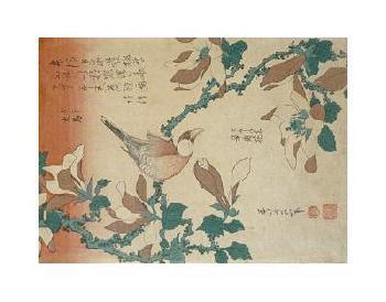 Katsushika Hokusai A Paddy Bird Perched On A Flowering Magnolia Branch Giclee
