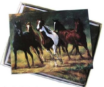 Chris Cummings Boxed Note Cards - Horses