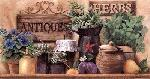Ed Wargo Antiques And Herbs