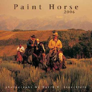 David Stoecklein Paint Horse 2006 Calendar