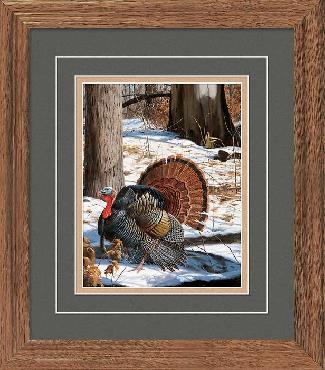David Maass Early Spring - Turkeys Framed Open Edition