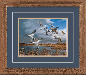 David Maass Pothole Country - Pintails Framed Deluxe Open Edition