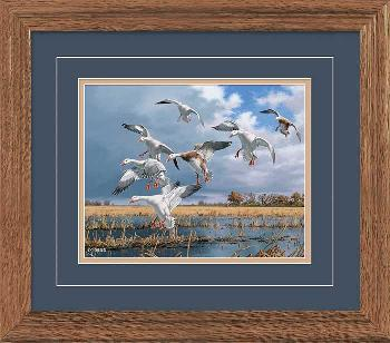 David Maass Texas Light - Snow Geese Framed Deluxe Open Edition