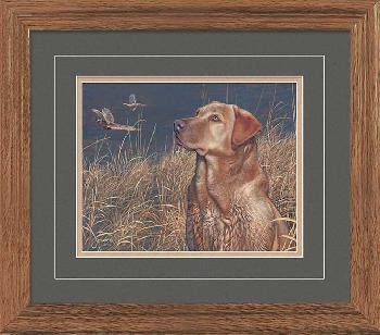 Scot Storm Field Companion - Red Lab Framed Open Edition
