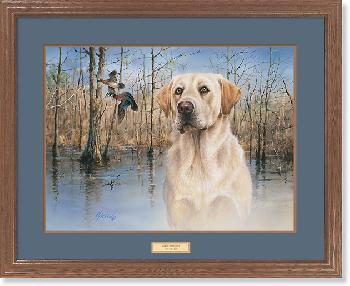James Killen Marsh Memories - Yellow Lab and Wood Ducks Framed
