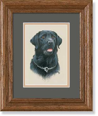 James Killen Black Lab Portrait Framed Mini Open Edition