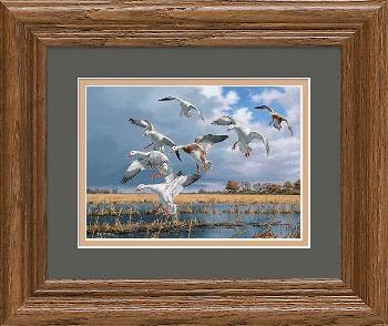 David Maass Texas Light - Snow Geese Framed Mini Open Edition