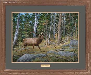 James Killen Deep Woods Monarch - Elk Framed Premium Edition