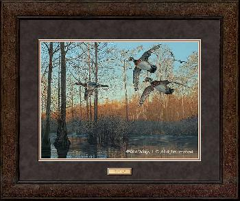 Scot Storm Early Morning - Wood Ducks Premium Plus Framed Open Edition