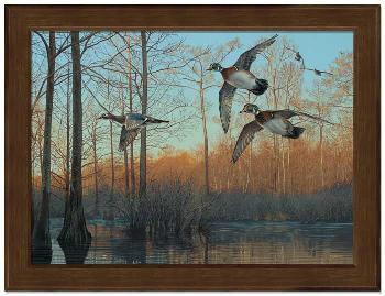 Scot Storm Early Morning - Wood Ducks Framed Open Edition on Canvas