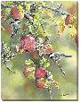 Bourdet Old Orchard Chickadees Gallery Wrapped Canvas