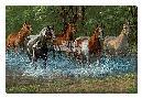 Chris Cummings Summer Creek - Horses
