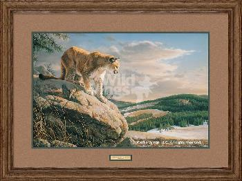 Jim Hautman Vantage Point - Cougar Framed