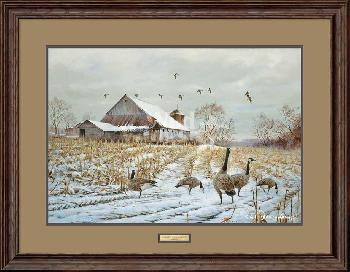 James Killen Country - Canada Geese Framed