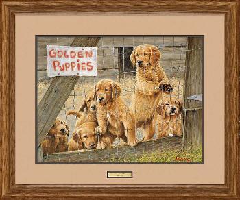 James Killen Golden Daze - Golden Retriever Puppies Framed Remarqued
