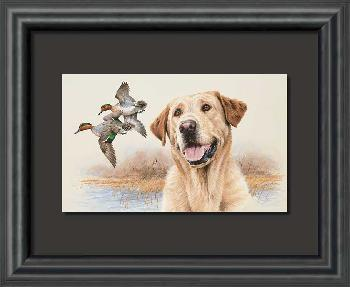 James Killen In the Marsh - Yellow Lab Framed Open Edition