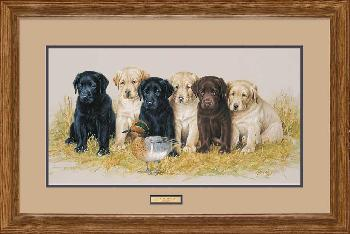 James Killen Greenhorns - Lab Puppies Framed Artist