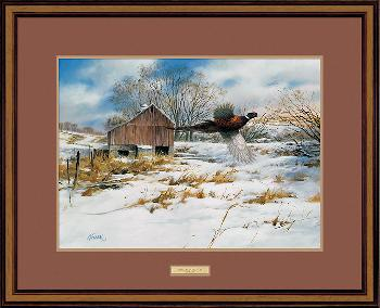 James Killen Pheasant Country Framed Remarqued