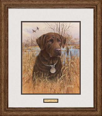 James Killen Top Dog - Chocolate Lab Framed Signed Open Edition on Paper