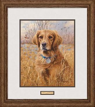 James Killen Top Dog - Golden Retriever Framed Signed Open Edition on Paper