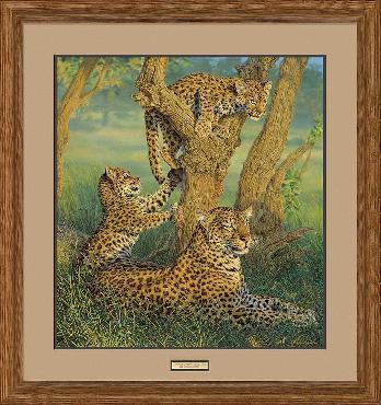 Lee Kromschroeder Family Outing - Leopards Framed