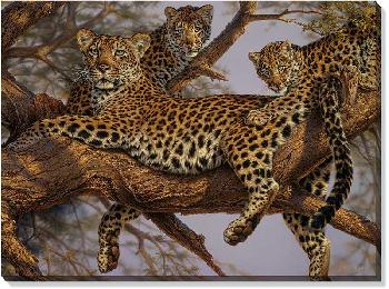 Lee Kromschroeder Family Tree Leopards Open Edition Wrapped Canvas