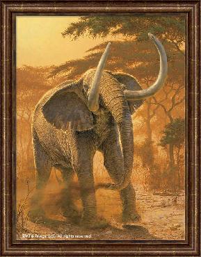 Lee Kromschroeder Golden Warrior - Elephant Framed Canvas