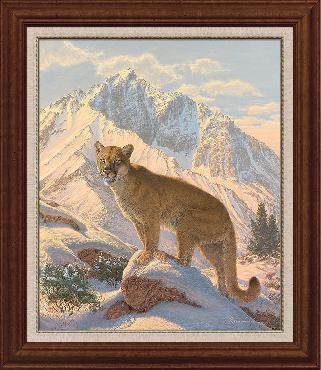 Lee Kromschroeder Spirit of the West - Cougar Framed Canvas